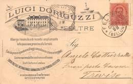 """08263 """"BELLUNO-FELTRE - LUIGI DORIGUZZI - ALBERGO- TRENI FERROVIARI SERVIZIO PREMUROSO""""  CART COMM SPED 1898 - Italy"""