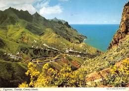 "0171 "" TAGANANA - TENERIFE - CANARY ISLANDS  ""  - CART. ORIG.  SPED. - Tenerife"