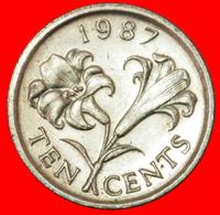 # FLOWER (1986-1998): BERMUDA ★ 10 CENTS 1987! LOW START ★ NO RESERVE! - Bermudes