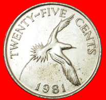 # BIRD (1970-1985): BERMUDA ★ 25 CENTS 1981!  LOW START ★ NO RESERVE! - Bermudes