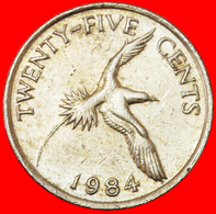 # BIRD (1970-1985): BERMUDA ★ 25 CENTS 1984! LOW START ★ NO RESERVE! - Bermudes