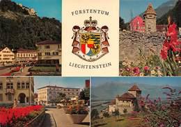 """0173 """" VADUZ - LIECHTENSTEIN - LANDESFURSTLICHE RESIDENZ""""  - CART. ORIG.  SPED. - Liechtenstein"""