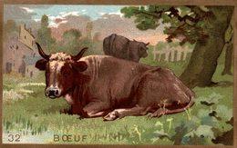 CHROMO BOEUF - Trade Cards