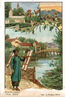 CHROMO  NOS COLONIES  INDO-CHINE - Trade Cards