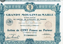02-GRANDS MOULINS DE MARLE. MARLE Sur SERRE. AISNE. DECO - Aandelen