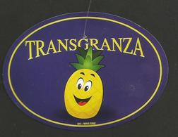# PINEAPPLE TRANSGRANZA Fruit Tag Balise Etiqueta Anhanger Ananas Pina Costa Rica - Fruits & Vegetables