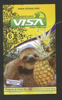 # PINEAPPLE VISA Size 6 - Fruit Tag Balise Etiqueta Anhanger Ananas Pina Bradipo Sloth Costa Rica - Fruits & Vegetables