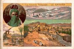 CHROMO  LES COLONIES FRANCAISES  LE SAHARA - Trade Cards