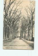 PARAY Le MONIAL - Avenue De Charolles - Animée - 2 Scans - Paray Le Monial