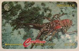 Lobster - Anguilla