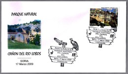 BUITRES - VULTURES. Parque Natural Cañon Del Rio Lobos. Soria 2009 - Águilas & Aves De Presa