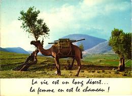LA VIE EST UN LONG DESERT, LA FEMME EN EST LE CHAMEAU REF 56752 - Humour