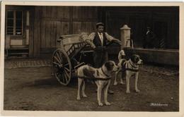 Postcard Dog Cart Attelage De Chien MILK Lait Milchkareen Photo Card SUISSE D 1071 Photoglob ZURICH - Marchands Ambulants
