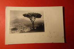 CARTOLINA NAPOLI   DA S MARTINO      E  1112 - Napoli