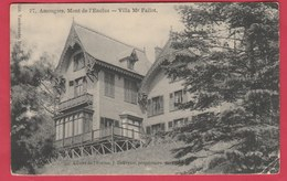 Amougies-Mont De L'Enclus - Villa Mr Fallot - 1902 ( Voir Verso ) - Kluisbergen