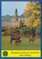 Deutschland; Tambach über Coburg; Schloss - Coburg