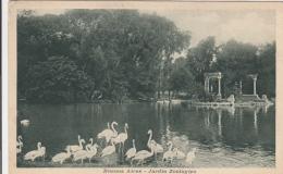 AK - Argentinien - Buenos Aires - Jardin Zoologico - 1923 - Argentinien