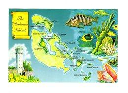CPM The Bahamas Islands (Caraïbes) - Postcards