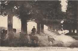 D07 - LA LOUVESC - PAYSAGE SUR LE CHEMIN DE LA FONTAINE - (moutons) - La Louvesc