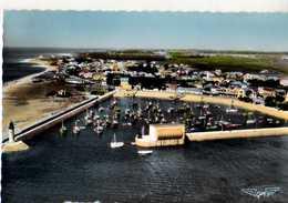 17 ILE D'OLERON La Cotiniere Le Port, La France Vue Du Ciel - Ile D'Oléron