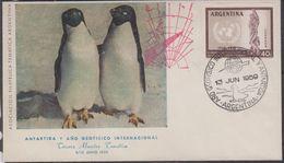 Argentina 1959 Antartida Y Ano Geofisco Internacional (cover With Penguins) Ca 13 Jun 1959 (40073) - Argentinië