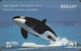 Canada Prepaid BCTEL - Killer Whale - 20$ - Canada