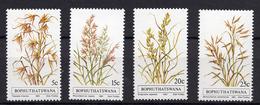 1981 - BOPHUTHATSWANA - Mi. Nr. 80/83 - NH - (UP121.11) - Bophuthatswana