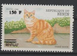 Bénin 2000 Mi. 1304 Chat Katze Cat Gatto Faune Fauna Surchargé Overprint MNH** - Bénin – Dahomey (1960-...)