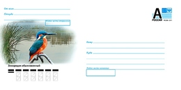 Russia 2018  Postal Stationery Cover Kingfisher Martin-pêcheur  Birds Bird Oiseaux Oiseau - Uccelli