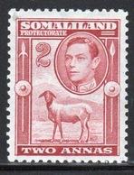 Somaliland Protectorate 1938 George VI Single Two Anna Maroon Stamp. - Somaliland (Protectorate ...-1959)