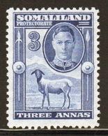 Somaliland Protectorate 1942 George VI Single Three Anna Blue Stamp. - Somaliland (Protectorate ...-1959)