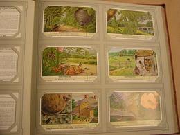 INSEKTENNESTEN Nids D' Insectes Liebig Série Reeks 6 Chromos Nederlandse Taal Trading Cards Chromo - Liebig