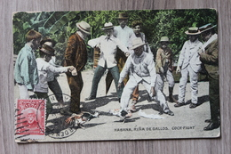 HABANA - RINA DE GALLOS - COCK FIGHT / COMBAT DE COQS - Cuba