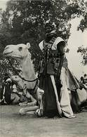 Pays Div - Ref M660- Niger - Partisan Mehariste  - Carte Bon Etat  - - Niger
