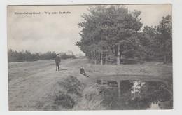 Heide-Calmpthout  Kalmthout   Weg Naar De Statie  Edit Hoelen N° 4204 - Kalmthout