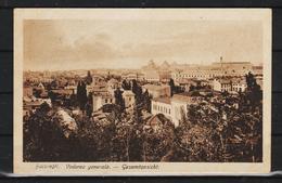 1919 - BUCURESTI -  Vedere Generala - Romania