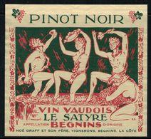 Etiquette De Vin // Pinot Noir De Begnin, Vaud, Suisse - Etiquettes