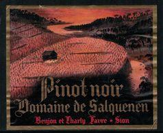 Etiquette De Vin // Pinot Noir De Salquenen, Valais, Suisse - Labels