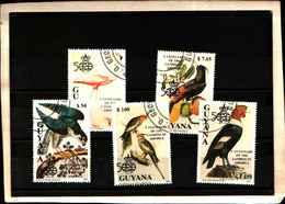 71795) GUYANA - 500 ANN. SCOPERTA DELL'AMERICA-UCCELLI- 5 V. 2685A-2685E -USATI - Guyana (1966-...)