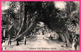 Ceylon - Kalutara - Banyan Tree - Animée - PLATE Ltd N° 51 - Sri Lanka (Ceylon)
