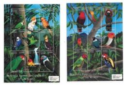 Sierra Leone 2000 Birds Parrots & Panakeets 2 Sheets MNH - Sierra Leone (1961-...)