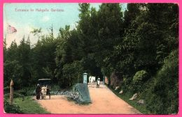 Ceylon - Entrance To Hakgalla - Bullock - Animée - PLATE Ltd N° 94 - Colorisée - Sri Lanka (Ceylon)