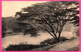Kandy - The Mountain Capital Of Ceylon - Animée - PLATE Ltd N° 101 - Sri Lanka (Ceylon)