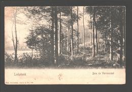 Linkebeek - Bois De Verrewinkel - Enkele Rug - 1906 - Linkebeek