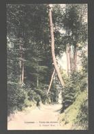 Linkebeek - Vallée Des Artistes - Uitgave Lagaert - Gekleurd / Colorisée - Nieuwstaat - Linkebeek