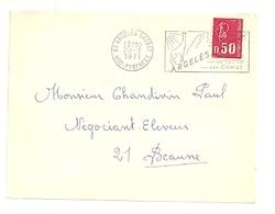 PYRÉNÉES HAUTES - Dépt N° 65 = ARGELES GAZOST 1971 = FLAMME à DROITE = SECAP Illustrée D'un CHAMOIS ' EAUX ' - Postmark Collection (Covers)