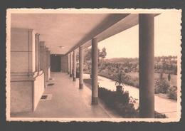 Pulderbos / Pulderbosch - St-Jozefspreventorium - Zicht Van Uit Een Terras - 1949 - Zandhoven