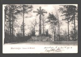 Scherpenheuvel / Montaigu - Chemin De Rosaire - Enkele Rug - 1902 - Scherpenheuvel-Zichem