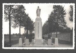 Westmalle - Cisterciënzer Abdij - Het Beeld Van Kristus-Koning Vóór De Ingangspoort - Nieuwstaat - Nels Bromurite - Malle