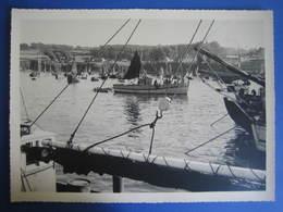 Douarnenez. Belle Photo Port De Pêche Bateaux - Boats